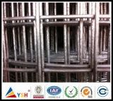 Treillis métallique soudé galvanisé/par PVC enduit (usine 20years et ISO9001 approuvés)