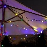 100 het LEIDENE Multi Gekleurde Zonne Lichte Insect van de Tuin met UL