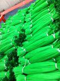 주문 로고를 가진 PP PE 플라스틱 유형 도매 식물성 Extured 과일 메시 순수한 부대