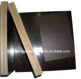 A madeira compensada/película quentes da venda enfrentou a madeira compensada para a construção