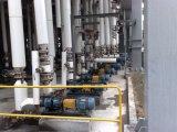 Pompa centrifuga di aspirazione chimica di conclusione con l'ex motore