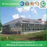 Landwirtschafts-rostfreier Stahl-Aluminiumprofil PC Blatt-Gewächshaus für Blume und Gemüse