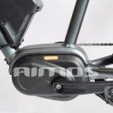 Bici gorda eléctrica del MEDIADOS DE mecanismo impulsor de AMS-Tde-08b 250W 36V con la visualización del LCD