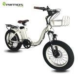 China-billig faltbares elektrisches Fahrrad des neuen Fett-20 ''