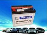 말리십시오 비용이 부과된 자동차 배터리 12V (N36-N220)를