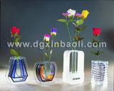 Bouteille acrylique de vase/fleur