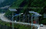 Lumière solaire de chaussée de constructeur de la Chine et réverbère solaire
