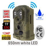 Ereagle 12MP MMS branco Flash Top Rated Hunting Trail Camera