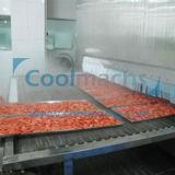 Luft-Böe-Tunnel-schnelle Gefriermaschine für essbare Meerestiere, Gemüse, Frucht