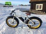 後部フン族モーター250W脂肪質のタイヤの雪山浜の電気バイク