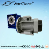 motore a magnete permanente di CA 3kw con il rallentatore (YFM-100A/D)