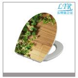 Hochwertiger runde Form-gesundheitlicher Ware-Toiletten-Sitzdeckel