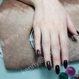 Chamäleon-Gel-Nägel, Chrom-Nagel-Entwurf, Pigment nagelt Schönheit