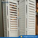 A plantação de alumínio Shutters Windows e portas