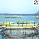 Jaula flotante de los pescados del HDPE plástico