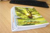 Suministro de papelería personalizada Escuela A4 A5 Cuaderno con espiral