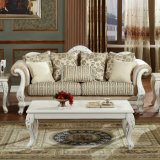 Sofà domestico antico stabilito del sofà classico del salone con il blocco per grafici di legno