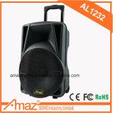 Haut-parleur sans fil de vente chaud de microphone de PA