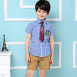 "Uniformi scolastichi britannici di estate di stile in "" public school "" di 100%Cotton"