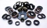 Proffessional Hersteller-Öldichtung für mechanische Dichtungen