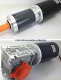 Grootte 80mm de Elektrische Worm van gelijkstroom & de Planetarische Motor van het Toestel, 12V 24V 36V 48V, de Hoge Grote Macht van de Torsie