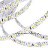 illuminazione di striscia di 80CRI 12V SMD 2835 LED 120LED/M