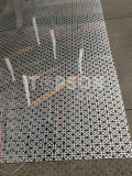 Strato dell'acciaio inossidabile che incide la decorazione decorativa dell'elevatore di colore
