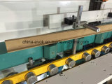 La maggior parte della riga di legno automatica professionale trecciatrice del bordo (TC-60MT) del portello