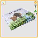 고품질 두꺼운 표지의 책 아동 도서 인쇄 (OEM-GL006)