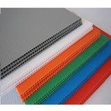 Feuille bon marché de PC de cavité de feuille de polycarbonate colorée par qualité