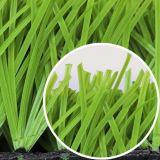 Plastic Synthetisch Gras voor Voetbal/Voetbal
