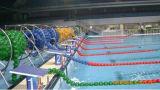 Конкуренция оборудования плавательного бассеина FL участвуя в гонке веревочка майны