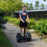 道の電気一人乗り二輪馬車2の車輪の自己のバランスをとるゴルフスクーターを離れたEcoriderのリチウム電池
