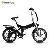 250W 48Vの方法電気自転車
