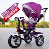 세발자전거 자전거 아이들 세발자전거가 고품질 아기 세발자전거에 의하여 농담을 한다