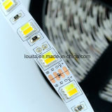 Tira de IP65 12V SMD5025 LED
