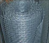 熱い販売! ! ! 正方形の織り方によって電流を通される鉄条網かエクスポートの家禽は網を平方する