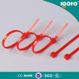 Пластичная петля кабеля связывает связи кабеля с черной пропиткой провода Self-Locking