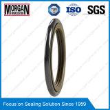 Tg3 / M15 Perfil de PTFE de goma de alta presión anillo retén