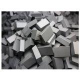 Extremidades del carburo de tungsteno Ss10 para la mina
