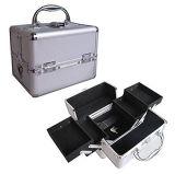 Aluminiumtellersegment-Kasten des verfassungs-Serien-Schmucksache-Kasten-kosmetischer Organisator-Silber-4