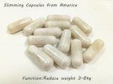 Capsule de régime normale de 100% - Garcinia de perte de poids