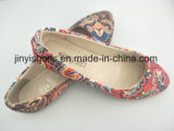 New Lady Shoes Inner Door Flat Fabric Multi Color Pointed Toe Hot Sales