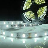 La flessione LED di SMD mette a nudo 2835 l'indicatore luminoso della striscia 60LED/120LED/M del LED