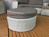 Jeux extérieurs de sofa de jardin de rotin et de Plastique-Bois de meubles de patio (TG-8131)