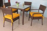 Tabella Furniture-105 esterno del rattan di svago