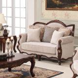 Insieme del sofà dell'oggetto d'antiquariato dello strato del tessuto di Americanl con l'insieme classico della Tabella