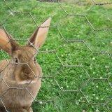 Шестиугольные ловя сетью провод /Chicken/загородка кролика