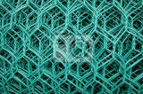 PVC Green High Quality Hexagonal Chicken Net