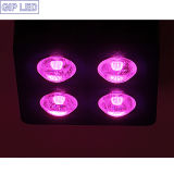 Più alto Efficient Hydroponic LED Plant Grow Lights COB Growing Light 504W